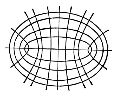 This attractive image shows the common surface that curves smoothly, vintage line drawing or engraving illustration.