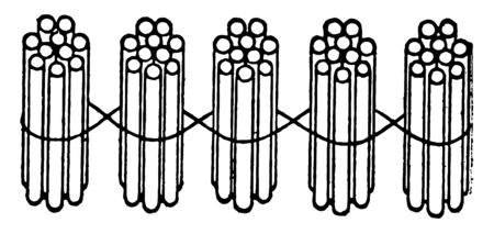 This counting card has Stick art on it. 50 Sticks illustration is on the card. Sticks are bundled together in group of 10. These are used to teach grouping & counting, vintage line drawing or engraving illustration. Illustration