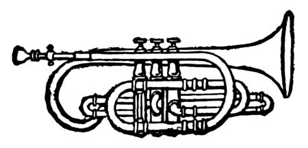 Cornet is a treble wind instrument made of brass, vintage line drawing or engraving illustration. Standard-Bild - 132976072