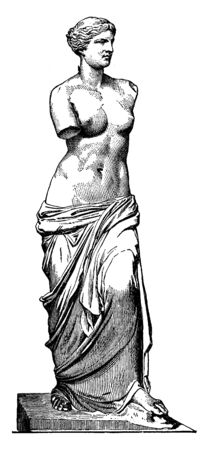 A statue of Greek goddess of love and beauty. Statue has missing arms, vintage line drawing or engraving illustration.