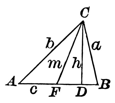 An image showing a triangle with altitude and median. In this three triangle shown, vintage line drawing or engraving illustration. Иллюстрация