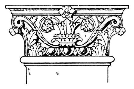 Roman-Corinthian Pilaster Capital, top, level, Roman, Colosseum, holding, least, weigh, vintage line drawing or engraving illustration. 向量圖像