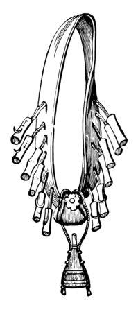 Bandoleer is a pocket belt for holding ammunition, vintage line drawing or engraving illustration. Ilustrace