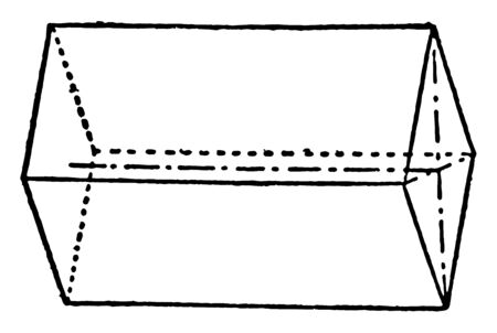 The image shows Macro-prism consists of four faces parallel to Brachys axis, vintage line drawing or engraving illustration.