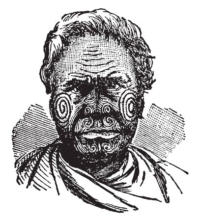 Tattooed Maori Chief was formerly a common custom for shipmasters to purchase these on visiting New Zealand, vintage line drawing or engraving illustration.