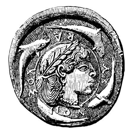 This image shows the Damareteion coin. On the surface of the coin is the face along with the fish that surrounds the face, vintage line drawing or engraving illustration.
