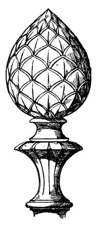 Modern Knob Finial is a fir-cone strength and machinability, lent, increasingly , vintage line drawing or engraving illustration. Reklamní fotografie - 132979035