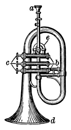 Saxhorn is a brass instrument with mouthpiece, vintage line drawing or engraving illustration.