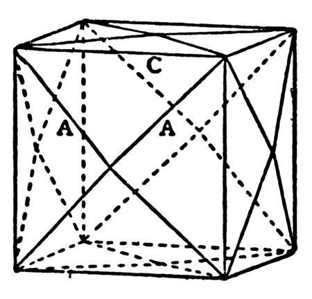 A geometrical figure of Tetrakis-hexahedron. This is square shaped solid figure bounded by twenty-four isosceles triangles, vintage line drawing or engraving illustration.