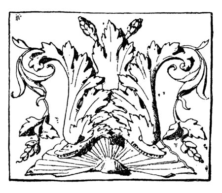 Dolphin Lower Panel is found in the Ducal Palace in Venice, vintage line drawing or engraving illustration. Ilustrace
