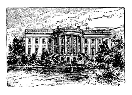 White house, early 1900 previously called Presidents house is an official building  vintage line drawing.  イラスト・ベクター素材