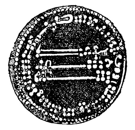 An ancient dinar engraved with some Arabic words, vintage line drawing or engraving illustration.