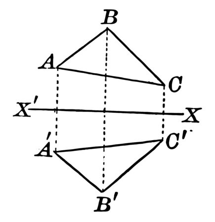 An image showing the quadrilateral. A quadrilateral with axis of symmetry drawn in a quadrilateral, vintage line drawing or engraving illustration. Ilustração