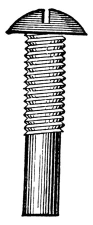 This illustration represents work function of Carriage Bolt, vintage line drawing or engraving illustration.