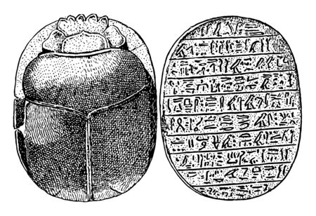The impression seal in Ancient Egypt called Scarab, vintage line drawing or engraving illustration. Ilustração
