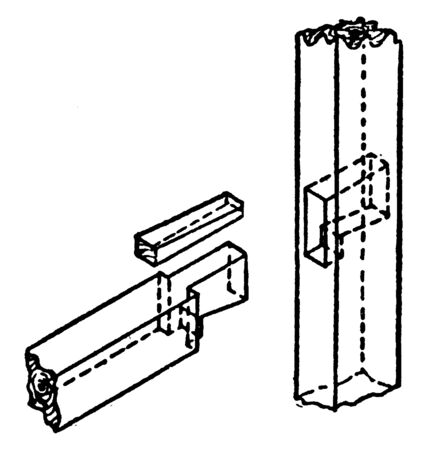This illustration represents Dovetail Tenon which has been used for thousands of years by woodworkers, vintage line drawing or engraving illustration.