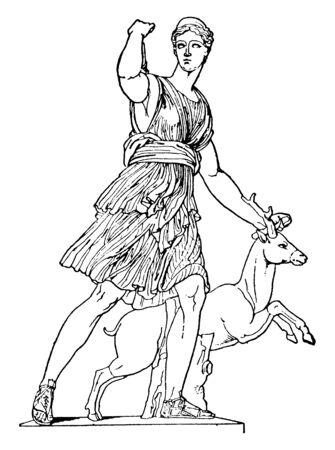 Portrait of Artemis, goddess of hunting, after protecting a stag, vintage line drawing or engraving illustration. 向量圖像
