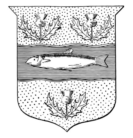 It contains a salmon fish in the middle and  three thistles around  vintage line drawing. Illustration