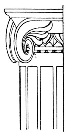Ionic Capitalancient, capital, design, Ionic, pompeii, rolled, scroll, vintage line drawing or engraving illustration.