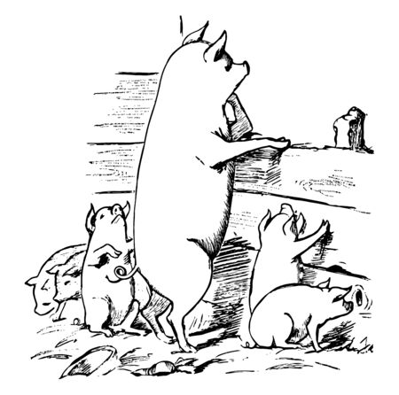 Pigs, this picture shows pig and piglets in a pigpen looking at something, vintage line drawing or engraving illustration Stock Illustratie