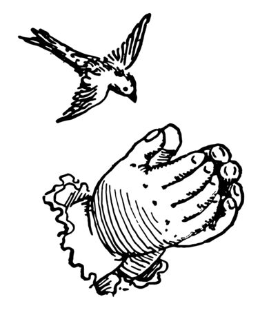 This picture represents Hands forming a nest for a bird, vintage line drawing or engraving illustration. Reklamní fotografie - 133404581