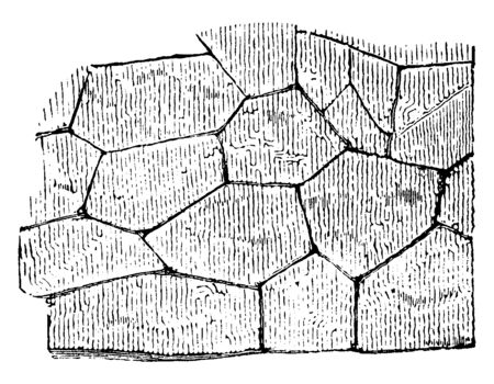 Cyclopean Masonry are found both in Greece, constructed, entirely, colonies, position, vintage line drawing or engraving illustration. Çizim