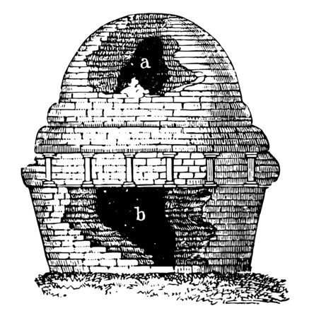 This image showing the remains of a Buddha or saint, vintage line drawing or engraving illustration.