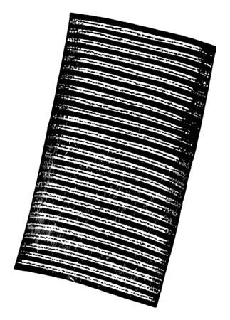 This illustration represents Fiber of Muscular Tissue Showing Alternating Bands, vintage line drawing or engraving illustration. Ilustração