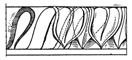 Leaf Enrichment Moulding is bent outwards,  clearing and staining leaves, venation patterns, vintage line drawing or engraving illustration.