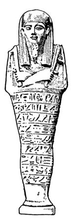 In this image a statue is depiction of the mummy, vintage line drawing or engraving illustration. 向量圖像