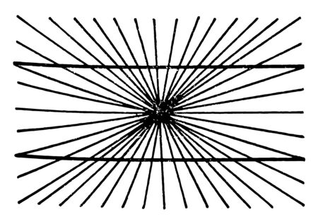 Optical Illusions is individual dedicated neural path in the early stages of visual processing, it is a interaction with active adjoining channels cause a physiological imbalance that alters perception, vintage line drawing or engraving illustration.