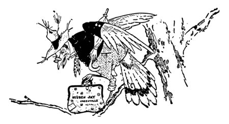 Jay bird wearing human dress and hat standing on branch of tree, and holding bag and umbrella, vintage line drawing or engraving illustration