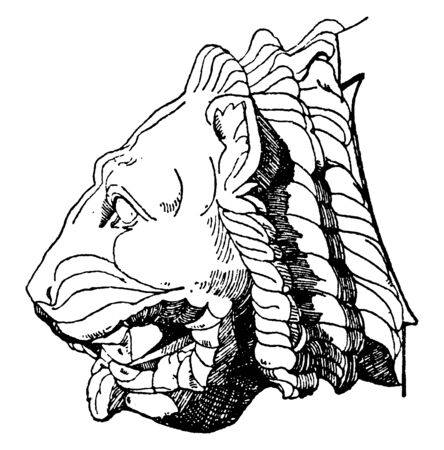 Gargoyle Lion Head found in the Parthenon of Athens, flying buttresses were used, aqueducts, vintage line drawing or engraving illustration.  イラスト・ベクター素材