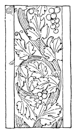 Renaissance Ornament Vine was used as a design on an Italian pilaster, vintage line drawing or engraving illustration.