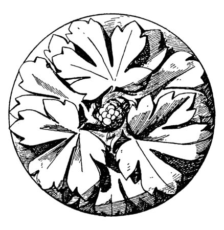 Early Gothic Boss Rosette is made of three divisions, its Designed in 1240, vintage line drawing or engraving illustration.