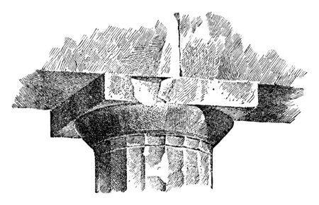 Echinus Molding, A Capital of the Parthenon,  In architecture, the convex projecting molding, eccentric curve in Greek examples, vintage line drawing or engraving illustration.
