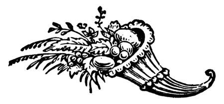 Cornicopia is large horn shaped container that holds flowers, nuts in abundance, vintage line drawing or engraving illustration.
