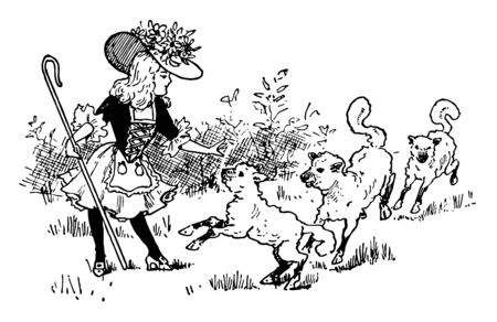 Little Bo Peep, this picture shows a little girl with hat holding stick and three sheep near her, vintage line drawing or engraving illustration