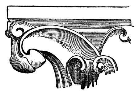 Crocket is hook-shaped decorative element, leaves, buds or flowers, regular, intervals, vintage line drawing or engraving illustration. 向量圖像