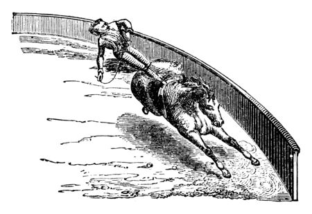 Circus Horse trained to run around a circus ring with a man standing on his back, vintage line drawing or engraving illustration.