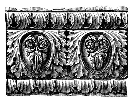 Roman Cornice, Richly Ornamented Roman Ovolo, the massive character of Roman architecture,  the Italian  meaning are ledge, vintage line drawing or engraving illustration. 向量圖像
