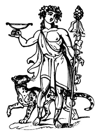 The Roman God known as Bacchus standing with wild animal. Bacchus was believed to be the Roman god of agriculture, wine and fertility copied from Greek God, vintage line drawing or engraving illustration.