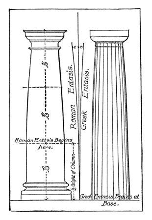 Entasis, bulge, columns, curve, entasis, order, vintage line drawing or engraving illustration.