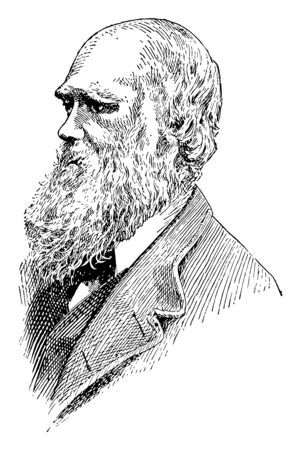 Charles Darwin, 1809-1882, he was an English naturalist, geologist and biologist, famous for his contributions to the science of evolution, vintage line drawing or engraving illustration
