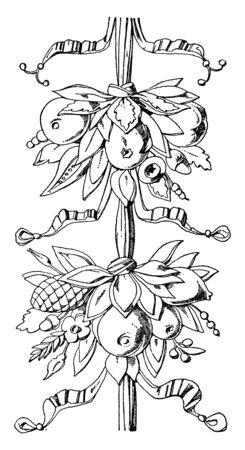 Libreria Cluster is a fruit Festoon design found in the Cathedral of Siena, vintage line drawing or engraving illustration.