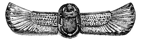 Scarab is a common motive in Egyptian art, vintage line drawing or engraving illustration. Иллюстрация