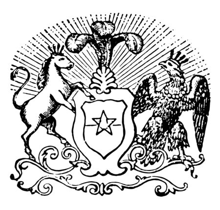 Chilean Coat of Arms is made up by a figurative background divided in two equal parts, vintage line drawing or engraving illustration. Çizim