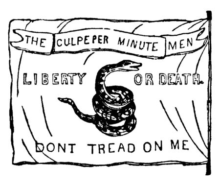 The Culpepper Flag, this flag has snake in center, DONT TREAD ON ME is written at bottom of flag, vintage line drawing or engraving illustration Vettoriali