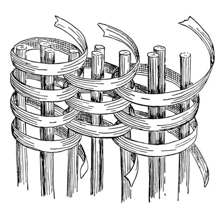 Coiled Work Basket Weave are made by sewing over and over with some sort of flexible material, stitch interlacing with the one underneath, vintage line drawing or engraving illustration.