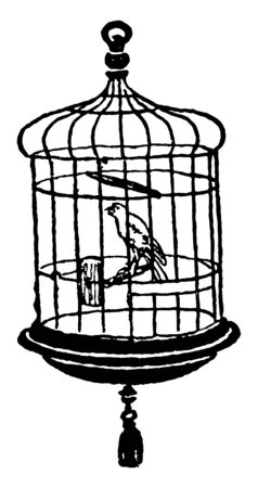 Canary in Cage where a canary in a coal mine is an advanced warning of some danger, vintage line drawing or engraving illustration.